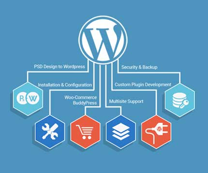 Wordpress Website Designing and Development Agency in India